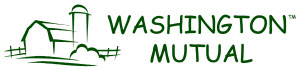 Washington Mutual Insurance Company